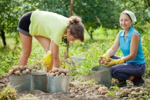 Εκδήλωση αφιερωμένη στους Γυναικείους Αγροτικούς Συνεταιρισμούς