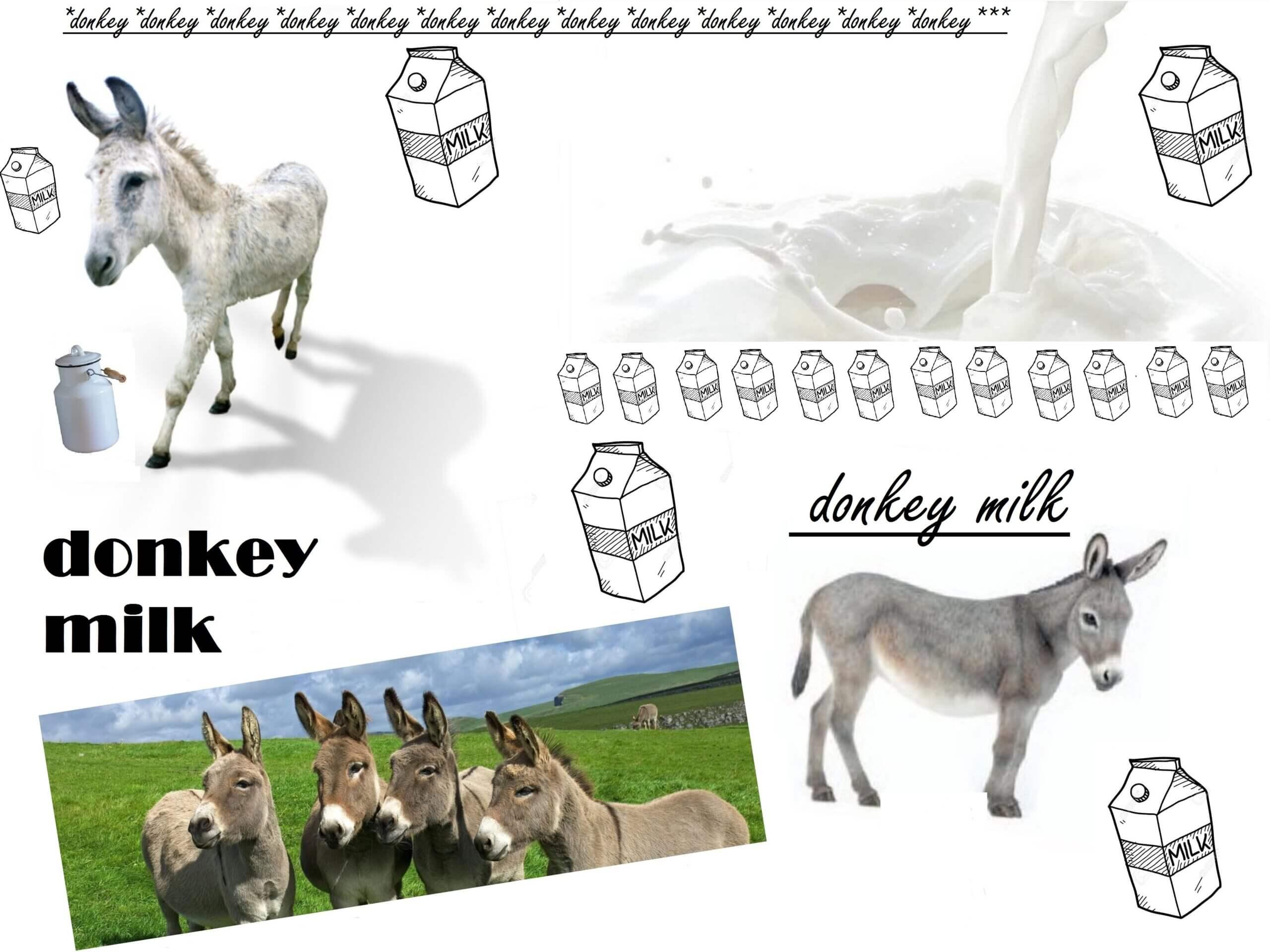 Μια νέα διατροφική προσέγγιση στο γάλα γαϊδούρας