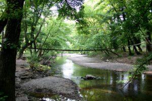 Ο ποταμός Κηρέας