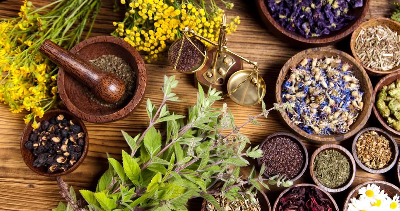 Aroma Innovation Hub: Εστιάζοντας στα ελληνικά βότανα