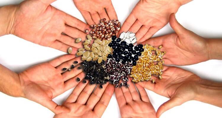 Ανταλλαγή σπόρων πραγματοποιήθηκε στην Ιερά Μονή Τιμίου Προδρόμου Ανατολής Κισσάβου