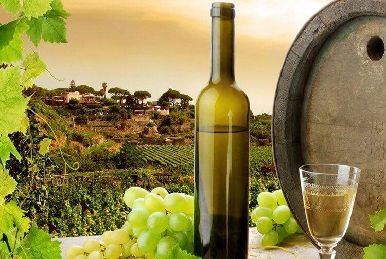 Το Ηράκλειο Κρήτης επιλέχθηκε για τη διοργάνωση του διεθνές συνεδρίου της UNESCO με θέμα «Άμπελος, Οίνος, διατροφή και υγεία».