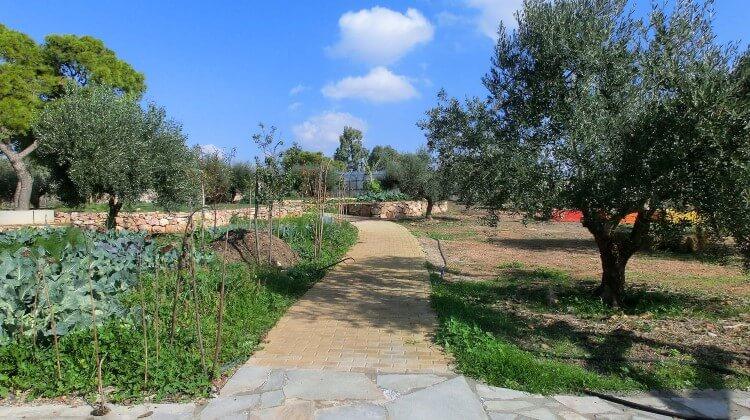 Το «Περιβόλι στη Βάρη» είναι μία οικολογική φάρμα στο Χέρωμα Βάρης