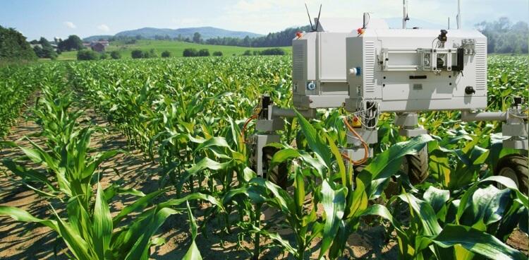 Νέες τεχνολογίες με ρομπότ βρίσκουν την εφαρμογή τους στον αγροδιατροφικό τομέα