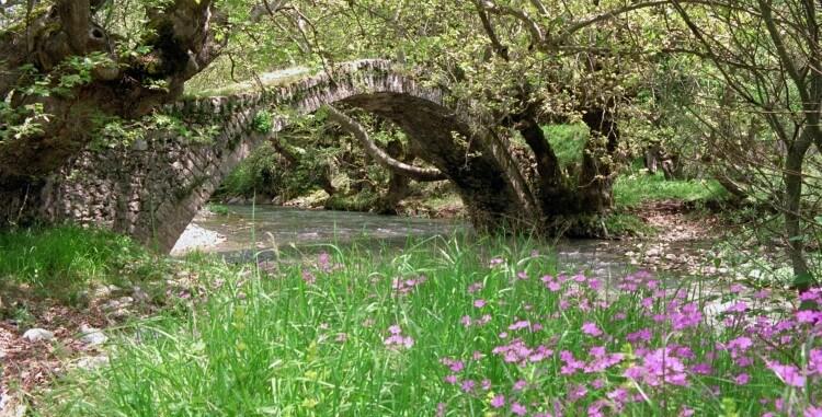 Το Καρπενήσι ενδείκνυεται για χαλάρωση αλλά και πολλές δραστηριότητες στο πλούσιο φυσικό τοπίο του.