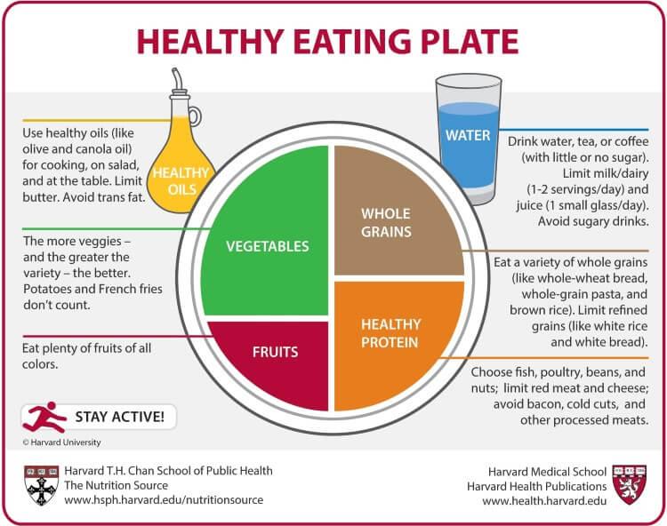 Πρόσφατη έρευνα του Χάρβαρντ κατέληξε σε σημαντικά συμπεράσματα για την ιδανική δίαιτα