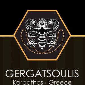 gergatsoulis logo