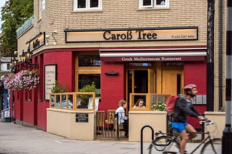 carob-tree-garden