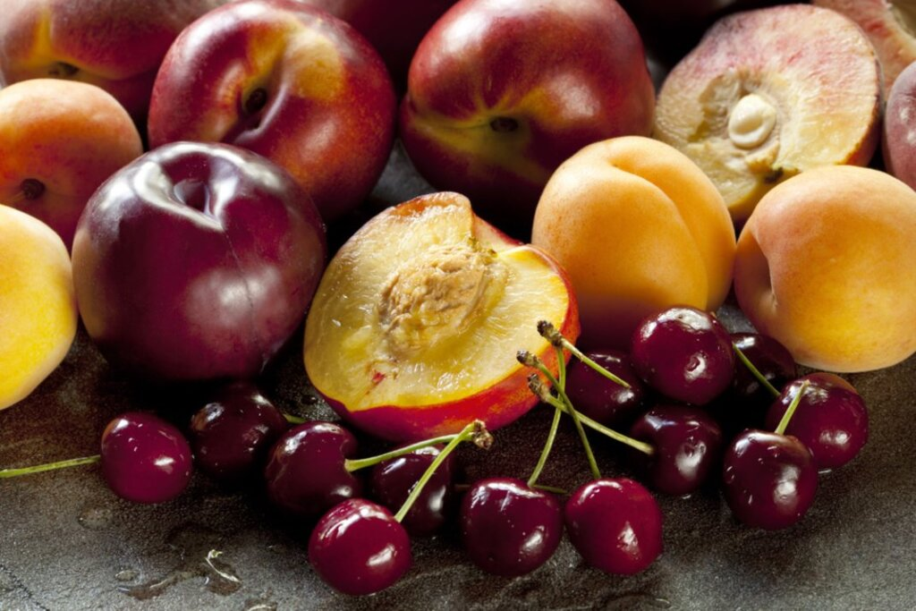 Fruit seed exports